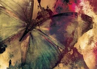 Абрактен фототапет с пеперуда 12586