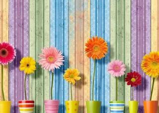 Фототапет цветя на дървена стена - 3708