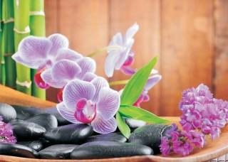 Фототапет лилави орхидеи дзен - 115