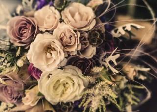 Фототапет букет от рози - 12578
