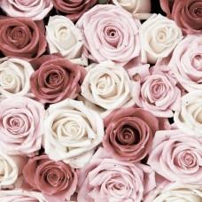 Фототапет с червени и бели рози - 1629