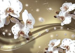 Фототапет орхидеи на кафяв фон - 2314
