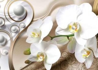 Фототапет бяла орхидея на бежов фон - 2952