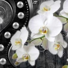 Фототапет дизайн на орхидея - 2973