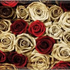 Фототапет рози от различни цветове - 3101