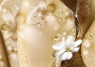 Фототапет художествена стенопис с нежни цветя - 3331