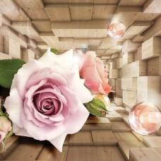 3D Фототапет розова роза - 3357