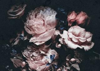 Фототапет рози на черен фон - 13525