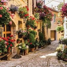 Фототапет улица с цветя по стените - 1339