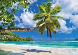 Наклонена палма на райски плаж - 10332