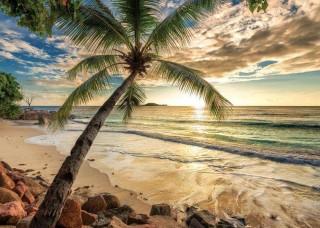 Фототапет изгрев на тропическия плаж - 11732