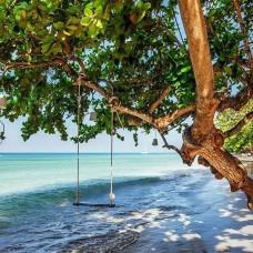 Фототапет люлка на плажно дърво - 11850