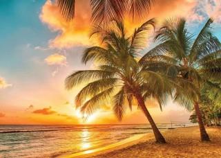Фототапет палми на плажа по залез слънце - 3393