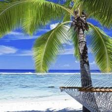 Фототапет тропически плаж с палма и хамак - 578