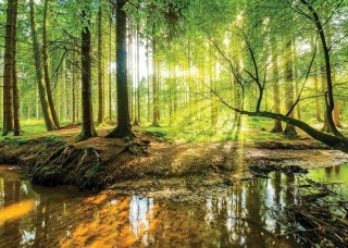 Фототапет горско езеро - 10513