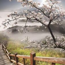 Фототапет пейзаж с цъфнало пролетно дръвче - 12022
