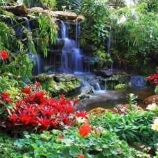 Фототапет цветя до малък водопад - 166