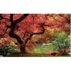 Фототапет есенно дърво край езерото - 270