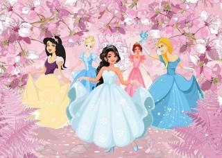Фототапет с принцеси  - 13236