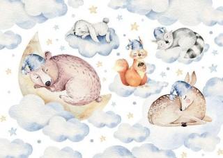 Фототапет облак със спящи животни  - 13671