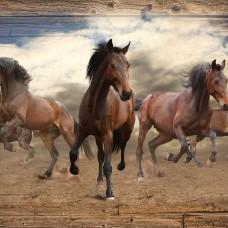 Фототапет свободни, бягащи коне - 10083