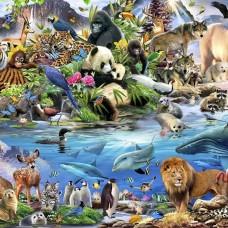 Фототапет животни от всички континенти - 12843