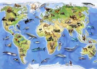 Фототапет карта на животинския свят за деца - 12844