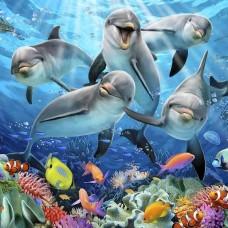 Фототапет усмихнати делфини - 12849