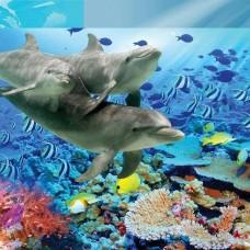 Фототапет делфини - C04107