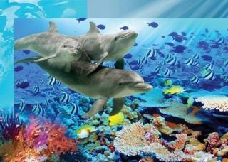 Фототапет делфини - 072